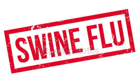 Swine Flu Challenges Citizens to Act