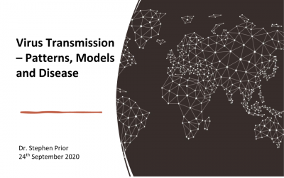 Virus Transmission – Patterns, Models and Disease